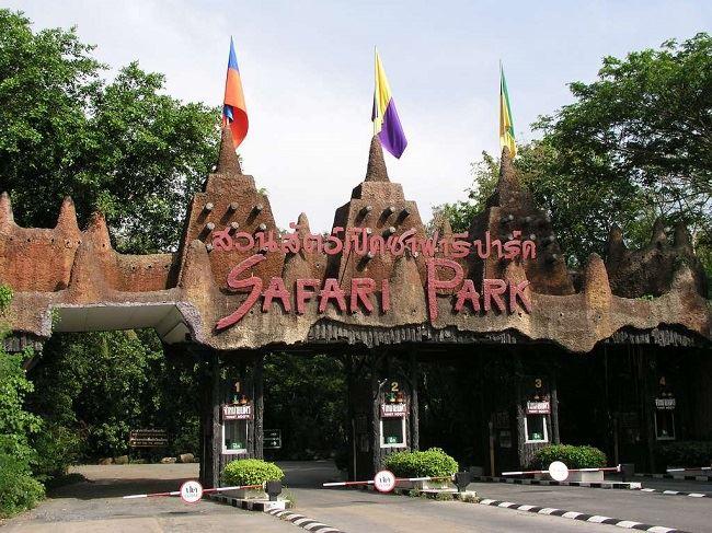 Vườn thú tự nhiên lớn nhất Châu Á-công viên Safari World