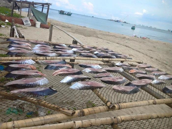 Cá thu ướp một nắng chuẩn vị truyền thống